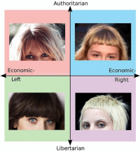 Memes, Beach, and Libertarian: Authoritarian  Economic  Economic-  Left  Right  Libertarian the beach fossils show ln got me thinking even more about the correlation between bangs and political alignment