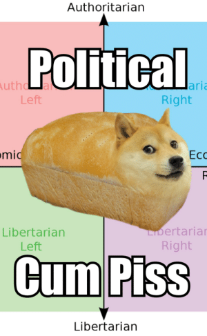 I don't mean to get poltical or anything but what the fuck is doge?: Authoritarian  Political  Authd a  Left  lari  Right  mid  Ес  LIbertarian  Libertarian  Right  Left  Cum Piss  Libertarian I don't mean to get poltical or anything but what the fuck is doge?