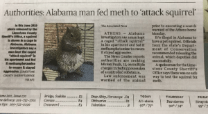 "Friday, Funny, and News: Authorities: Alabama man fed meth to 'attack squirrel  In this June 2019  prior to executing a search  warrant of the Athens home  Monday.  It's illegal in Alabama to  have a pet squirrel. Officials  from the state's Depart-  ment of Conservation  recommended releasing the  animal, which deputies did  successfully.  A spokesman for the Lime-  stone County Sherriff's  Office says there was no safe  way to test the squirrel for  meth.  The Associated Press  photo released by the  Limestone County  Sherlff's Office, a squirrel  is shown in a cage In  Alabama. Alabama.  investigators say a  man kept the ecaged  attack squirrel"" in  his apartment and fed  it methamphetamine  to ensure it stayed  aggressive. (LIMESTONE  COUNTY SHERIFFS OFFICE  ATHENS  Alabama  investigators say a man kept  a caged ""attack squirrel""  in his apartment and fed it  methamphetamine to ensure  it stayed aggressive.  The News Courier reports  authorities are  Mickey Paulk, 35, on multiple  charges including possession  of a controlled substance.  Law enforcement was  warned of the animal  seeking  VIA AP  ume 200, Issue 170  e delivery: 205-752-3701  s tips: 205-722-0199  Bridge, Sudoku  Comies.  E3  B4  E3  Dear Abby, Horoscope .D2  Obituaries  Television  TODAY  THURSDAY  FRIDAY  At-storm  Few storms  Stray stc  95°/7  ..82  .  Crossword  92°/75°  B  90°/74 My mom sent me this article from the local news paper this morning."