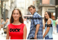 Autocorrect, Funny, and Love: AUTOCORRECT  Fuck  DUCK I ducking love this meme https://t.co/njKXXy9nZS