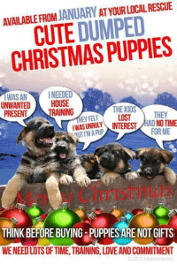 Memes, 🤖, and Dumping: AVAILABLE FROM  JANUARY  ATYOURLOCAL RESCUE  CUTE DUMPED  IWASAN  INEEDED  UNWANTED  HOUSE  THE KIDS  NING  PRESENT  THEY  EY FELT  LOST  INTEREST  MAD NOTIME  QUTIMAPUP  FORME  THINK BEFORE BUYING-PUPPIESARE NOT GIFTS  WENEEDLOTSOFTIME TRAINING, LOVEANDCOMMITMENT  02012 Missy edboots