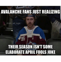Lmao, Logic, and Memes: AVALANCHE FANS JUST REALIZING  @nhl ref logic  THEIR SEASONISN'TSOME  ELABORATE APRIL FOOLSJOKE LMAO 😂😂😂 45 points for them.... (Tag Some Buds)