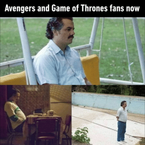 ...now what?: Avengers and Game of Thrones fans now ...now what?