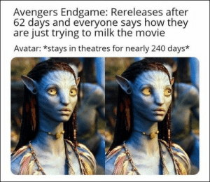 100 Of Today's Freshest Pics And Memes: Avengers Endgame: Rereleases after  62 days and everyone says how they  are just trying to milk the movie  Avatar: *stays in theatres for nearly 240 days* 100 Of Today's Freshest Pics And Memes