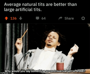 Something So: Average natural tits are better than  large artificial tits.  會 136  Share  64  Why would you say something so controversial yet so brave?  imgflip.com