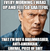 Memes, Shit, and Piece of Shit: AVERY MORNING LWAKE  THAT IM NOT A BRAINWASHED,  ANTHAMERICAN  LIBERAL PIECE OF SHIT 🇺🇸🇺🇸