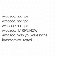 Every single time @gourmetlab: Avocado: not ripe  Avocado: not ripe  Avocado: not ripe  Avocado: I'M RIPE NOW  Avocado: okay you were in the  bathroom so I rotted Every single time @gourmetlab