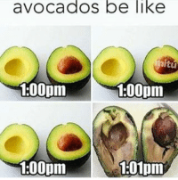 Sooo true.. fucking avocados lol :-) avocado instahappy jokes instagood haha laugh hilarious wacky tweegram epic crazy funnypictures friends silly funny joking like4like witty humor fun friend laughing photooftheday lmfao joke instafun lol lmao follow: avocados be like  itu  100pm  1:00pm  1:00pm  1:01pm Sooo true.. fucking avocados lol :-) avocado instahappy jokes instagood haha laugh hilarious wacky tweegram epic crazy funnypictures friends silly funny joking like4like witty humor fun friend laughing photooftheday lmfao joke instafun lol lmao follow