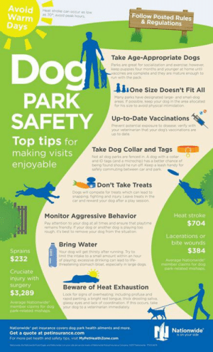 "Helpful tips on DOG PARK SAFETY !: Avoid  Warm  Days  Heat stroke can occur as low  as 70 avoid peak hours  Follow Posted Rules  & Regulations  Dogl  Take Age-Appropriate Dogs  Parks are great for socialization and exercise however  keep puppies four months and younger at home until  waccines are complete and they are mature enough to  run with the pack  one Size Doesn't Fit All  PARK  SAFETY  Many parks have designated large- and small-dog  areas If possible, keep your dog in the area allocated  for his size to avoid physical intimidation  Up-to-Date Vaccinations  Prevent potential exposure to disease verity with  your veterinarian that your dog's vaccinations ane i  up to date  Top tips for  making visits  enjoyable  Take Dog Collar and Tags  Not all dog parks are fenced in. A dog with a colar  and ID tags (and a microchip) has a better chance of  being found should he run off Keep a leash handy for  safely commuting between car and park  Don't Take Treats  Dogs will compete for treats which can lead to  snapping fighting and injury Leave treats in the  car and reward your dog after a play session  Monitor Aggressive Behavior  Heat stroke  $704  Pay attention to your dog at all times and ensure that playtime  remains friendly if your dog or another dog is playing too  rough it's best to remove your dog from the situation  Lacerations or  bite wounds  Bring Water  $384  Sprains  Your dog will get thirsty after running Try to  fimit the intake to a small amount within an hour  of playing: excessive drinkong can lead to ife  threatening stomach bloat, especially in large dogs i  $232  Average Nationwide  member claims for dog  park-related mishaps  Cruciate  injury with  Beware of Heat Exhaustion  surgery  $3,289  Look for signs of overbeating including profuse and  rapid panting a bright red tongue. thick drooling saliva  giassy eyes and lack of coordination If this occurs, take  your dog to a veterinarian immediately  Average Nationwide  member claims for dog  park rolated mishaps  Nationwide pet insurance covers dog park health ailments and more.  Get a quote at petinsurance.com  Nationwide""  is on your side  For more pet health and safety tips, visit MyPetHealthZone.com Helpful tips on DOG PARK SAFETY !"