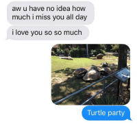 Funny, Love, and Party: aw u have no idea how  much i miss you all day  i love you so so much  Turtle party texts from @jewhead