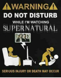 Memes, Squirrel, and 🤖: AWARNINGA  DO NOT DISTURB  WHILE I'M WATCHING  SUPERNATURAL  SERIOUS INJURY OR DEATH MAY 0CCUR It's a fair warning...   ~ Squirrel