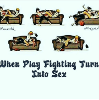 Memes, Sex, and 🤖: awer  Vhen Play Fighting Turn  Into Sex