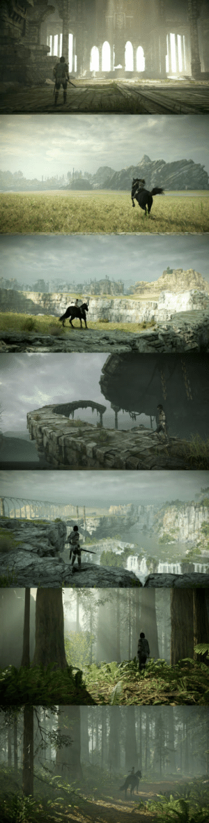 awesomacious:  The Stunning World of Shadow of the Colossus: awesomacious:  The Stunning World of Shadow of the Colossus