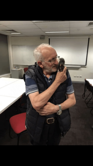 awesomacious:  Wholesome homeless man is reunited with his pet rat, Lucy, after police and community work together to find her. More pictures in comments.: awesomacious:  Wholesome homeless man is reunited with his pet rat, Lucy, after police and community work together to find her. More pictures in comments.