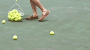 awesomage:  Tennis Ball Collector  : awesomage:  Tennis Ball Collector