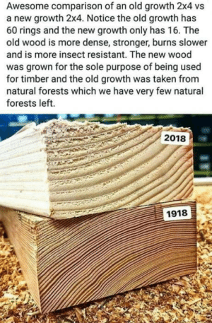 Taken, True, and Awesome: Awesome comparison of an old growth 2x4 vs  a new growth 2x4. Notice the old growth has  60 rings and the new growth only has 16. The  old wood is more dense, stronger, burns slower  and is more insect resistant. The new wood  was grown for the sole purpose of being used  for timber and the old growth was taken from  natural forests which we have very few natural  forests left.  2018  1918 True or not