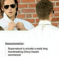 chevys: awesome insz:  Supernatural is actually a really long  heartbreaking Chevy Impala  commercial