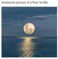 Awesomeness Pictures: Awesome picture of a flour tortilla