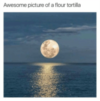 I can't tell the difference now: Awesome picture of a flour tortilla I can't tell the difference now