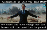Memes, All The, and Awesomeness: Awesomeness is when you dont study  7  For exams and even though you can  Answer all the questions in paper!