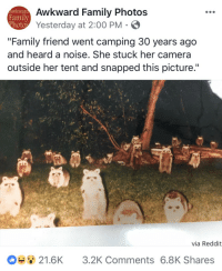 "Family, Reddit, and Target: Awkward Family Photos  Yesterday at 2:00 PM S  Awkwara  Family  hoto  ""Family friend went camping 30 years ago  and heard a noise. She stuck her camera  outside her tent and snapped this picture.""  via Reddit  21.6K 3.2K Comments 6.8K Shares <p><a href=""http://artekka.tumblr.com/post/173512505006"" class=""tumblr_blog"" target=""_blank"">artekka</a>:</p><blockquote><p>the terrifying part is that, 30 years ago you'd have to wait to get the film developed to see what was out there…</p></blockquote>"
