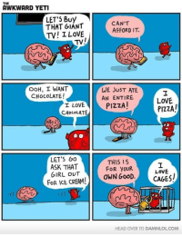 Memes, 🤖, and Ask: AWKWARD YETI  LET'S Buy  CAN'T  THAT GIANT  AFFORD IT  TV! I LOVE  TV!  OOH, I WANT  WE JUST ATE  CHocOLATE!  AN ENTIRE  LOVE  PIZZA  I LOVE  PIZZA!  CHocOLATE  O O  LET'S Go  THIS IS  ASK THAT  FOR youR  GIRL OUT  OWN GOOD  CAGES/  FOR ICE CREAM!  HEAD OVER TO DAMNLOLCOM