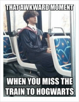 It's been 20 years since the first Harry Potter book was published. People on the internet keep on making funny Harry Potter memes. Enjoy these hilarious Harry Potter memes that only true fans will understand and laugh at.#1 The snake was talking.#2 What's life without little risk?... #HarryPotter: AWKWARDMOMENT  THATI  WHEN YOU MISS THE  TRAIN TO HOGWARTS It's been 20 years since the first Harry Potter book was published. People on the internet keep on making funny Harry Potter memes. Enjoy these hilarious Harry Potter memes that only true fans will understand and laugh at.#1 The snake was talking.#2 What's life without little risk?... #HarryPotter