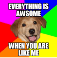 thumb_awsome when you are like me 16259089 25 best everything is awesome meme memes deadpoole memes, amie