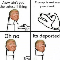 happy birthday @realdonaldtrump If you saw trump what would you say to him? Lol: Aww, ain't you  the cutest lil thing  Oh no  Trump is not my  president  Its deported happy birthday @realdonaldtrump If you saw trump what would you say to him? Lol