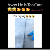 Aww, Memes, and Tbt: Aww He Is Too Cute  (a mutebitch2  I'm Crying Would you like to advertise your business, your talent, a funny video or something else on my page? 🆗🆒🆕DM me for very cheap rates.😎😎😎See great results💯💯💯 ❤❤SHOUT OUT Sunday SALE 🌏🌎PayPal only💰💰💰✔✔✔ Go subscribe to my YouTube @mutebitch2😎😎😎 🚘FREE £10 FOOD 🚘FREE £10 FOOD 🚘FREE 🆕🆕🆕🆕🆕CentralDish CentralDish Centraldish £10 OFF your first takeaway order GO TO: Centraldish.com-signup and add the reward code MICH6703 at the checkout page. FREE RIDE 🚘 FREE RIDE🚘 FREE RIDE Need a taxi? Have you tried Uber? Use my promo code MUTEDOG2 for your first ride on me❤❤❤ Click the link in my bio😎 🚘FREE🚘FREE 🚘FREE 🚘FREE🚘 🆕GETT GETT GETTAXI 🚕🚕🆓🆓 Use my code GTESXCT for £5 off your first taxi ride.🆒 Get the app: http:-invitev-uk.gett.com-code-GTESXCT🚕🚕 🚘FREE🚘FREE 🚘FREE 🚘FREE🚘 mutebitch2 uber GETT cabs food 2017 instagramstories love tbt repost cute me instagood followme summer instadaily happy photooftheday me like4like friends selfie girl fun art tags4likes smile follow mutebitch3