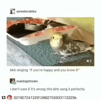 "Af, Singing, and Sang: awwdorables  birb singing ""if you're happy and you know it""  roaringstream  I don't care if it's wrong this birb sang it perfectly  L1 33192724122912862755933172225k wholesome af"
