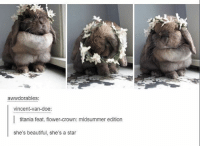 SO CUTE | (Check link in bio!) funnyfriday funnytumblr tumblr funny tumblrtextpost funnytumblrtextpost funny haha humor hilarious: awwdorables:  vincent-van-doe:  titania feat. flower-crown: midsummer edition  she's beautiful, she's a star SO CUTE | (Check link in bio!) funnyfriday funnytumblr tumblr funny tumblrtextpost funnytumblrtextpost funny haha humor hilarious