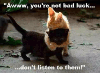 Awww: Awww, you're not bad luck...  ...don't listen to them