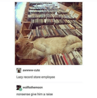 Yeah I gave him a raise, he's keeping the CDs up: awwww-cute  Lazy record store employee  R wolftothoemoon  nonsense give him a raise Yeah I gave him a raise, he's keeping the CDs up