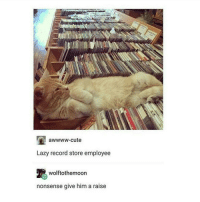 I wonder if the people of emo know that their village is now a v.popular textpost: awwww-cute  Lazy record store employee  wolftothemoon  nonsense give him a raise I wonder if the people of emo know that their village is now a v.popular textpost