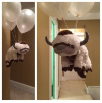 Cute, Target, and Tumblr: awwww-cute:Sky bison is best bison. (Source: https://ift.tt/1ACqIBw)