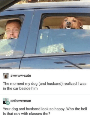 Cute, Dank, and Gandalf: awwww-cute  The moment my dog (and husband) realized I was  in the car beside him  setheverman  Your dog and husband look so happy. Who the hell  is that guy with glasses tho? My dog and husband by Gandalf-Grey MORE MEMES
