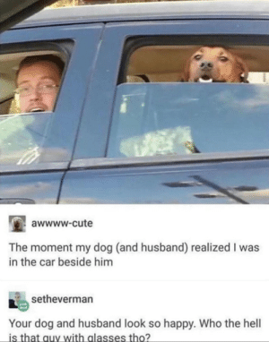 Cute, Glasses, and Happy: awwww-cute  The moment my dog (and husband) realized I was  in the car beside him  setheverman  Your dog and husband look so happy. Who the hell  is that auy with glasses tho? Whos that stranger
