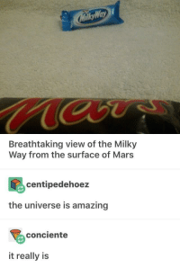 Mars, Amazing, and Milky Way: ay  Breathtaking view of the Milky  Way from the surface of Mars  centipedehoez  the universe is amazing  conciente  it really is The Universe is Amazing