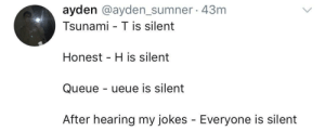 meirl by Tuhndraa MORE MEMES: ayden @ayden_sumner 43m  Tsunami - T is silent  Honest H is silent  Queue - ueue is silent  After hearing my jokes - Everyone is silent meirl by Tuhndraa MORE MEMES