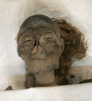 "aydenisabadkid:  airdramon:  awenyddogamulosx:  ruthlesswoodcarver:  mothensidhe:  fatfury:  omgxchrissy:  cumleak:  deux-zero-deux:  demands-with-menace:  Queen Hatshepsut of Ancient Egypt. She has a lovely smile for someone who's been dead for thousands of years.  she wasn't a queen. she was a pharaoh and wanted to be referred to as such. she even had her statues modeled after the male pharaoh's statues to state her dominance and authority. she was actually one of the most successful pharaohs in all of ancient egyptian history and she reigned longer than any other woman in power in egypt.  damn no wonder she died and smiled for a trillion years afterwards  The fact that we know about her is marvelous. the next Pharaoh after her Tuthmosis III  tried to erase Hatshepsut out of history ,chiseled her name off her monuments ,covered the text on her obelisks with stone,knocked down and defaced her statues . she was even left off the list of pharaohs ..talk about some patriarchy bullshit her name was lost for a couple of millennia, her body was found in a unmarked grave  in early twentieth century sad part is in Egyptian belief is  if your are forgotten in the living world you don't exist in the afterlife,so he was trying to kill her even in death   My best friend throwing down some herstory. A+ commentary  She wore a fake beard, you guys.She was the fucking boss.  If we remember her now does that save her from an awful afterlife?  I'm just picturing the Kemetic afterlife. All the Pharaohs are hanging out in some kind of swanky club, drinking and congratulating each other on being bros.  The doors slam open and Hatshepsut strides in, glorious, robes swirling, rocking the fake beard and the insane amounts of wealth and power. ""Miss me, bitches?""   Then she punches Tuthmosis III straight in the dick.   Reblog so Hatshepsut can dick punch tuthmosis in the afterlife.  : aydenisabadkid:  airdramon:  awenyddogamulosx:  ruthlesswoodcarver:  mothensidhe:  fatfury:  omgxchrissy:  cumleak:  deux-zero-deux:  demands-with-menace:  Queen Hatshepsut of Ancient Egypt. She has a lovely smile for someone who's been dead for thousands of years.  she wasn't a queen. she was a pharaoh and wanted to be referred to as such. she even had her statues modeled after the male pharaoh's statues to state her dominance and authority. she was actually one of the most successful pharaohs in all of ancient egyptian history and she reigned longer than any other woman in power in egypt.  damn no wonder she died and smiled for a trillion years afterwards  The fact that we know about her is marvelous. the next Pharaoh after her Tuthmosis III  tried to erase Hatshepsut out of history ,chiseled her name off her monuments ,covered the text on her obelisks with stone,knocked down and defaced her statues . she was even left off the list of pharaohs ..talk about some patriarchy bullshit her name was lost for a couple of millennia, her body was found in a unmarked grave  in early twentieth century sad part is in Egyptian belief is  if your are forgotten in the living world you don't exist in the afterlife,so he was trying to kill her even in death   My best friend throwing down some herstory. A+ commentary  She wore a fake beard, you guys.She was the fucking boss.  If we remember her now does that save her from an awful afterlife?  I'm just picturing the Kemetic afterlife. All the Pharaohs are hanging out in some kind of swanky club, drinking and congratulating each other on being bros.  The doors slam open and Hatshepsut strides in, glorious, robes swirling, rocking the fake beard and the insane amounts of wealth and power. ""Miss me, bitches?""   Then she punches Tuthmosis III straight in the dick.   Reblog so Hatshepsut can dick punch tuthmosis in the afterlife."