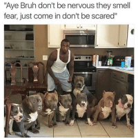 """Always that one dude 😩😂💯: """"Aye Bruh don't be nervous they smell  fear, just come in don't be scared"""" Always that one dude 😩😂💯"""