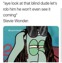 "Dude, Stevie Wonder, and Dank Memes: ""aye look at that blind dude let's  rob him he won't even see it  Comind  Stevie Wonder:  @supremevodeine What do you guys think about the theory that Stevie wonder can see?"