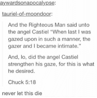 "Memes, Tumblr, and Angel: aywardsonapocalypse:  tauriel-of-moondoor:  And the Righteous Man said unto  the angel Castiel ""When last I was  gazed upon in such a manner, the  gazer and I became intimate.'""  And, lo, did the angel Castiel  strengthen his gaze, for this is what  he desired.  Chuck 5:18  never let this die supernatural spn spnfamily castiel mishacollins cockles destiel deanwinchester samwinchester marksheppard crowley jensenackles jaredpadalecki winchester sabriel twistandshout osricchau superwholock bobbysinger teamfreewill fandom markpellegrino impala casifer alwayskeepfighting akf tumblr robbenedict chuckshurley spncast"