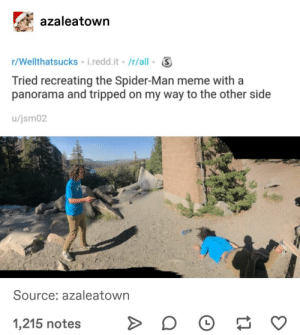 : azaleatown  r/Wellthatsucks i.redd.it /r/all  Tried recreating the Spider-Man meme with a  panorama and tripped on my way to the other side  /jsm02  Source: azaleatown  1,215 notes