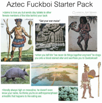 "America, Ass, and Love: Aztec Fuckboi Starter Pack  claims to love you but sends clay tablets to other  female members of the tribe behind your back  CLASSICAL ART MEMES  acebook.com/ciassicalartimeme  America  ""Get your own maize""  05  when you tell him ""we never do things together anymore"" he drags  you onto a blood stained altar and sacrifices you to Quetzalcoatl  AD  literally always high on mescaline, he doesn't even  know your name, he thinks you're an anthropomorphised  armadillo that happens to like eating ass"