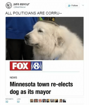 I love democracy by WaterRamenSenpai MORE MEMES: Bøis Øpscur  BO  Follow  @BoisObscur  ALL POLITICIANS ARE CORRU--  FOX 8  NEWS  Minnesota town re-elects  dog as its mayor  LIKES  RETWEETS  32  32 I love democracy by WaterRamenSenpai MORE MEMES