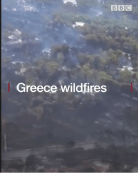 Fire, Memes, and Greece: B BIC  Greece wildfires These aerial pictures show the devastating impact of the wildfires in Greece. Tap the link in our bio 👆 to find out more about the catastrophic fires that have killed at least 80. Rescue workers are trying to locate missing people and the prime minister has declared three days of national mourning. fire firefighter disaster greece bbcnews