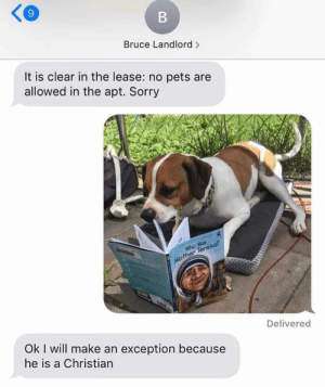 Animals, Dogs, and Memes: B  Bruce Landlord>  It is clear in the lease: no pets are  allowed in the apt. Sorry  R  Who Was  Mother Teresa?  Delivered  Ok I will make an exception because  he is a Christian Dog Memes Of The Day 30 Pics – Ep53 #animalmemes #dogmemes #memes #dogs - Lovely Animals World