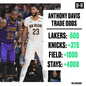The Lakers are GIGANTIC favorites to get Anthony Davis 👀: B-R  ANTHONY DAVIS  TRADE ODDS  NEW ORLEANS  23  wish  LAKERS  7LOS ANGELES  LAKERS:-500  KNICKS:+375  FIELD:+1000  STAYS:+4000  23  VIA CAESARS The Lakers are GIGANTIC favorites to get Anthony Davis 👀